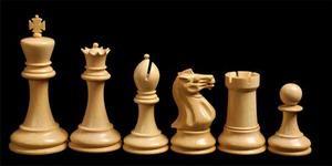 шахматы Можга
